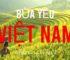 Bùa yêu Việt Nam